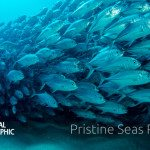 pristine-seas-nat-geo-project
